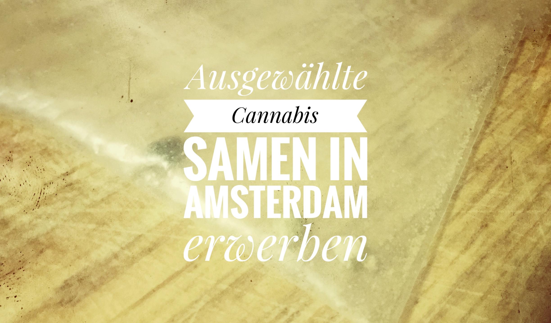 Samen in Amsterdam erwerben