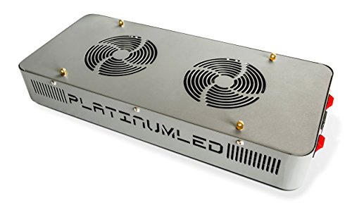Advanced Platinum P300