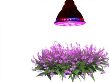 Taotronics Pflanzenlampe LED